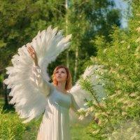 Весенний танец ангела :: Вячеслав Владимирович