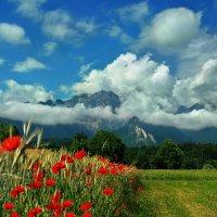 облака - белогривые лошадки :: Elena Wymann