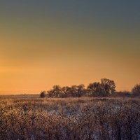Зима..... :: Aleks