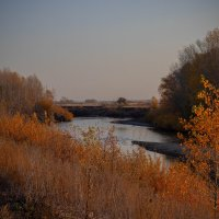 autumn :: elena13 .