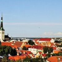 Таллин со смотровой :: Aida10