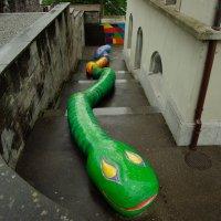 Змейка в Рапперсвиле :: Сергей Моченов