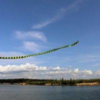 Полёты воздушного змея :: Ольга
