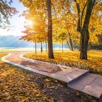 Изгиб аллеи парка :: Юлия Батурина