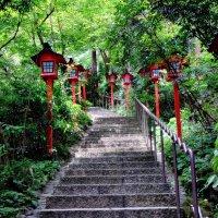 Лестница с фонариками, храмовый комплекс Nanzoin Япония :: Swetlana V