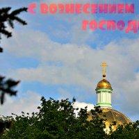 С Вознесением Господним! :: Михаил Столяров