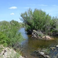 Степная речка Талды... :: Хлопонин Андрей Хлопонин Андрей