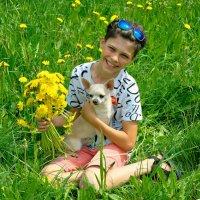 Одуванчики цветы ослепительно желты! :: Дмитрий Конев