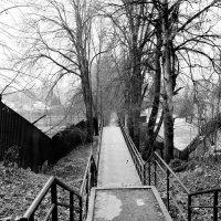 Боровские пейзажи :: Евгений Верзилин