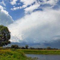 Первою июньскою грозою... :: Лесо-Вед (Баранов)