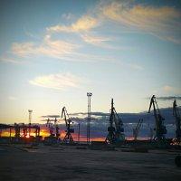 Утро в порту :: Denis Lipatov
