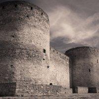Мощь башен. :: Андрий Майковский