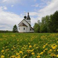 Околица села... :: Юрий Моченов