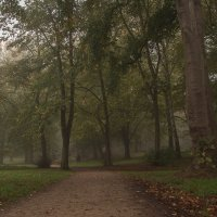 По осеннему парку :: Alexander Andronik