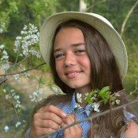 яблоня цветет :: Светлана Бурлина