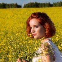 Желтые цветы :: Ирина Кононова