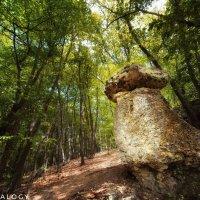 В Ивановой балке, неподалёку от села Дружное находится каменный гриб... На самом деле, он не одинок. :: Сергей Леонтьев