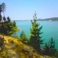 Лесное озеро :: Натала ***