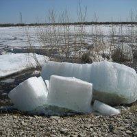 Вода уходит, льды остаются :: Anna Ivanova