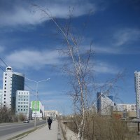 Сквозь бетон :: Anna Ivanova