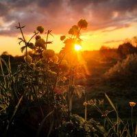закат на природе :: Георгий А
