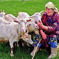 пастушка :: юрий иванов