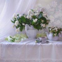 Жасминовый рай... :: Валентина Колова