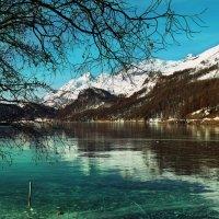 Silsersee, Graubünden und Schwarzeis :: Elena Wymann