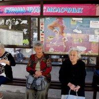 Бабушки - старушки :: Сергей Золотавин
