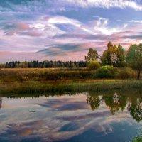 Пёстрое  небо :: Лара Симонова