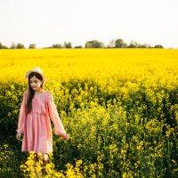 Прогулка в солнечном поле :: Алеся Макина