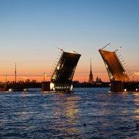 Дворцовый мост в белую ночь :: Владимир Тро