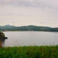для прогулок и дождь не страшен :: Елена