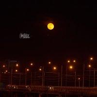Мост и луна :: Zefir58 Verx