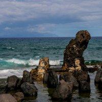 Канарские острова :: Олег Молчанов