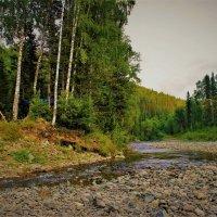 На берегу таёжной речки :: Сергей Чиняев