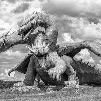 Приручить дракона... :: Юрий Никульников