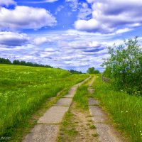 Дорога в поле :: Дмитрий Иванов