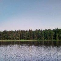 Лесное озеро. :: Валентина Жукова