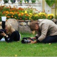С Днем фотографа, друзья! :: Вячеслав Минаев