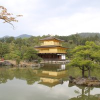 Япония :: Люба И.