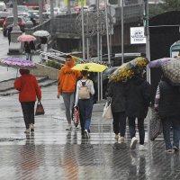 Июльские дожди... :: Валентин Амфитеатров