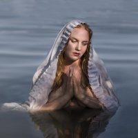 Madonna :: Annie Amar