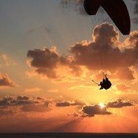 Удовольствие и ещё селфи! :: Vladimir Dunye