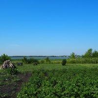 Сельский огород :: Сергей Воинков