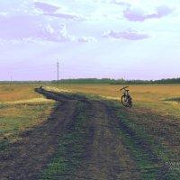 Отдыхающий велосипед :: Сергей Воинков