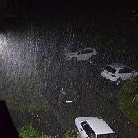 Дождище вливает... :: Владимир Павлов