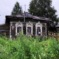 Старик :: Евгений Кочуров