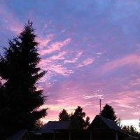 Розовый закат. :: Ирина ***