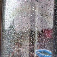 Дождь :: Света Кондрашова